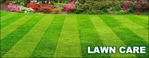 Wichita Lawn Care