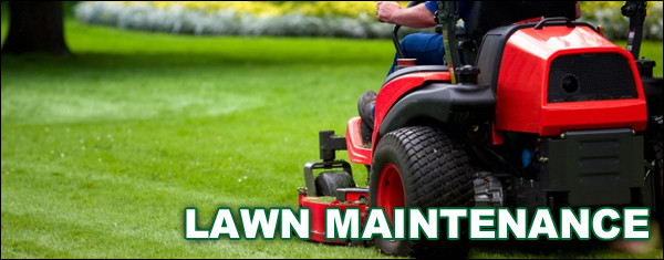 Wichita Lawn Maintenance